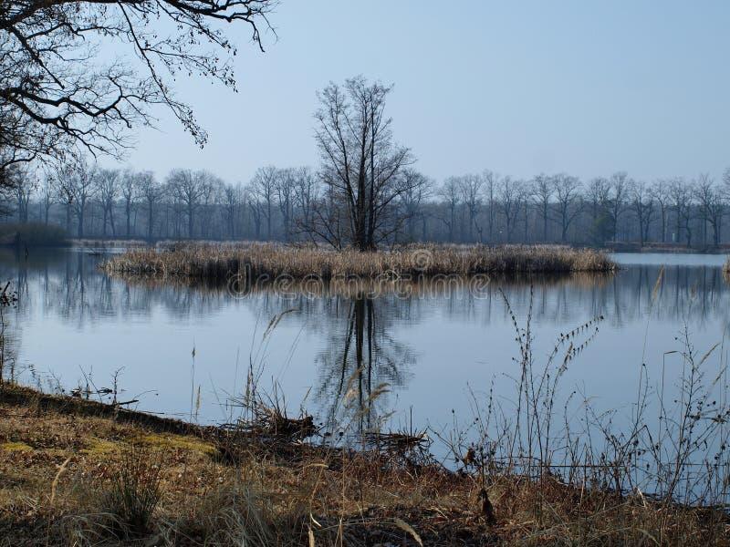 Download Landscape Ponds, South Bohemia Stock Photo - Image: 38734584