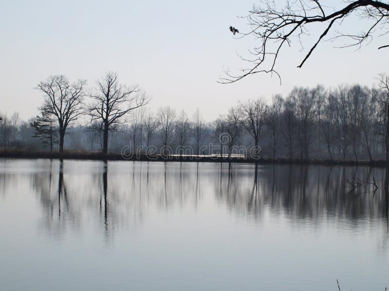 Download Landscape Ponds, South Bohemia Stock Photo - Image: 38734606