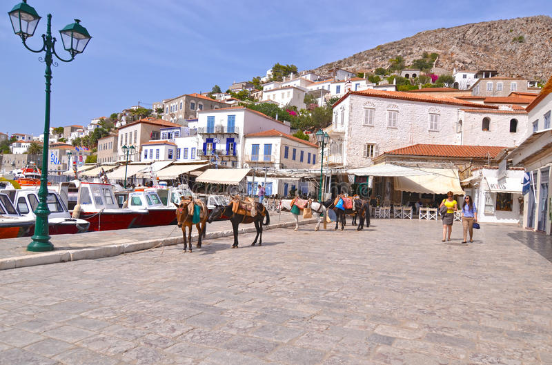 Landscape of the port of Hydra island, with the traditional donkeys, the only mean of transport royalty free stock photos