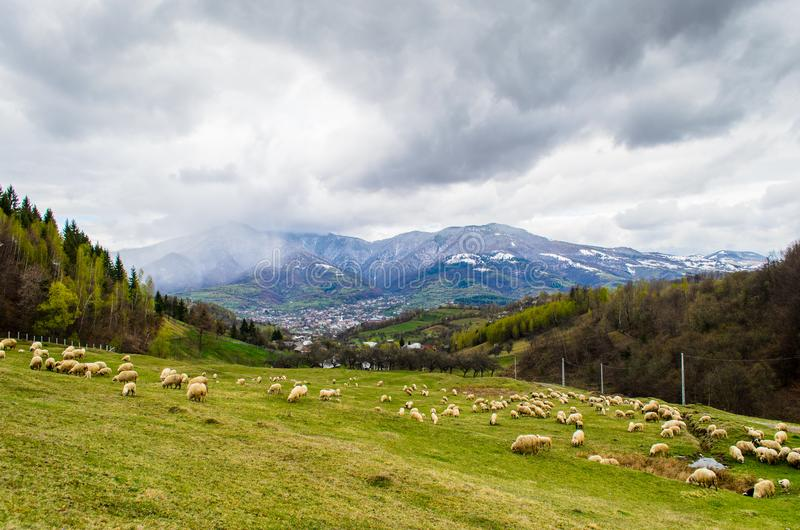 Landscape from Prundu Bargaului village, Bistrita Nasaud county, Transylvania. Prundu Bargaului village from Bistrita Nasaud, Scenic landscape in the Romanian royalty free stock photos