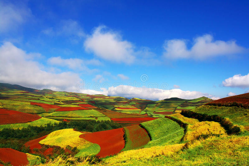 Landscape of red land. The landscape is very beautiful in yunnan china stock images