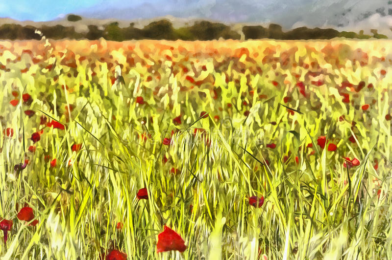Landscape with red poppies field vector illustration