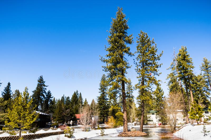 Landscape in a residential area of South Lake Tahoe on a sunny winter day, California stock image