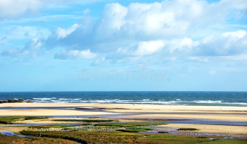 Landscape of Ria Formosa. Algarve royalty free stock photography