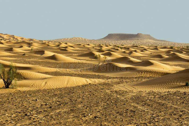 Landscape of Ripples of Desert Dunes in the Sahara, Tunisia. Ripples of desert dunes and mountain in the Sahara Desert in Tunisia stock image