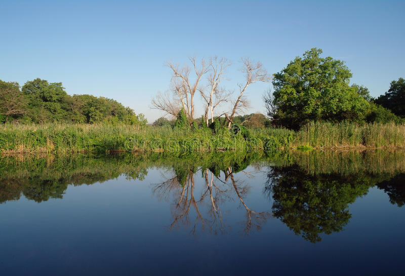 Download Landscape,river . stock image. Image of cloudscape, foliage - 24494967