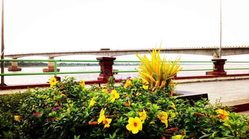 Landscape River side stock photo
