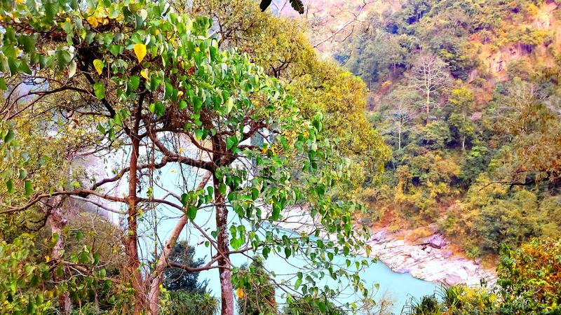 Landscape of river, tree and mountain, siliguri tourism, indian city tour. This is a picture of the landscape view of river, tree and mountain, siliguri tourism royalty free stock image