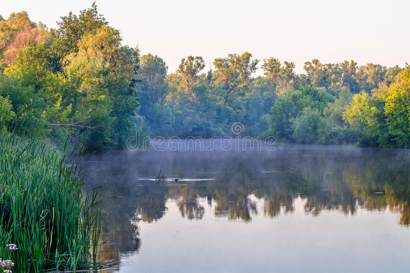 Landscape river water surface with reflection shores stock photos