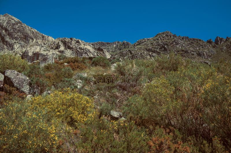 Landscape with rocky cliffs covered by green bushes. Hilly landscape with rocky cliffs covered by green bushes, at the highlands of Serra da Estrela. The highest stock images