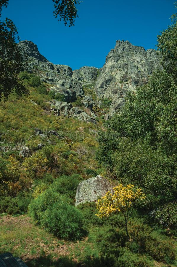 Landscape with rocky cliffs covered by green bushes. Mountainous landscape with rocky cliffs covered by green bushes and forest, at the highlands of Serra da stock photo