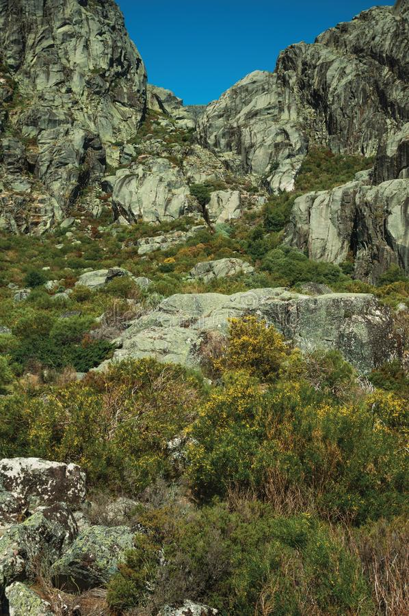 Landscape with rocky cliffs covered by green bushes. Mountainous landscape with rocky cliffs covered by green bushes in a sunny day, at the highlands of Serra da royalty free stock images