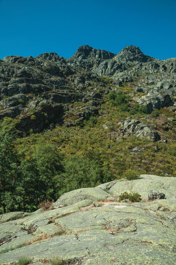 Landscape with rocky cliffs covered by green bushes. Mountainous landscape with rocky cliffs covered by green bushes in a sunny day, at the highlands of Serra da stock image