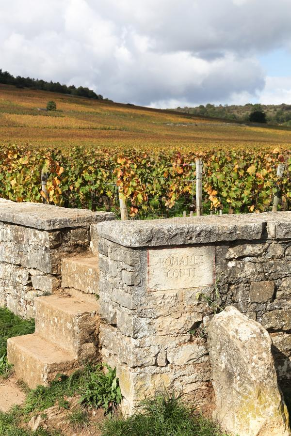 Landscape with Romanee Conti vineyards in Burgundy. France royalty free stock photo