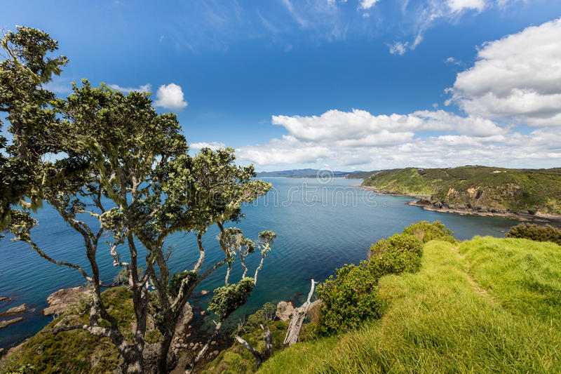 Landscape from Russell near Paihia, Bay of Islands, New Zealand.  stock photos