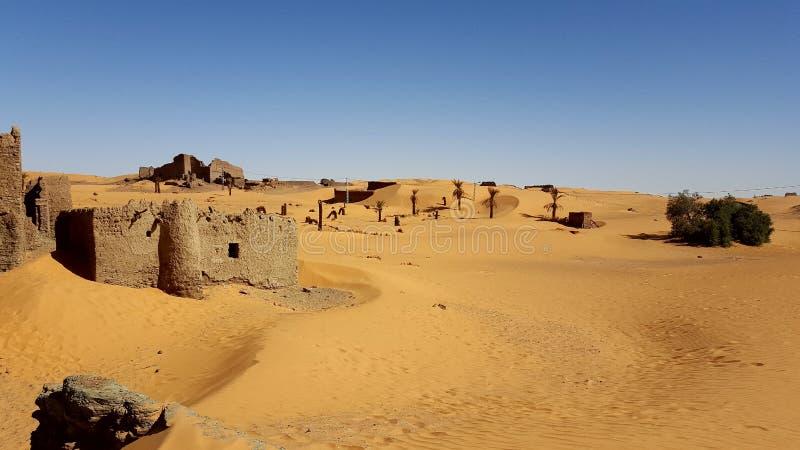 Landscape of sahara algeria royalty free stock photography