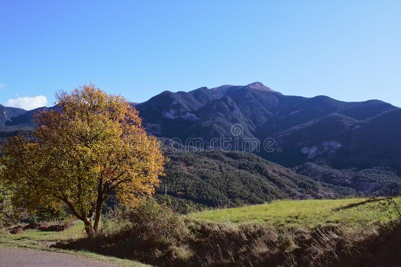 Landscape of mountains and meadows in autumn royalty free stock photo