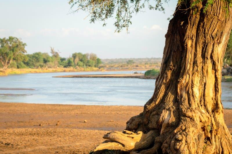 Samburu river and landscape royalty free stock image