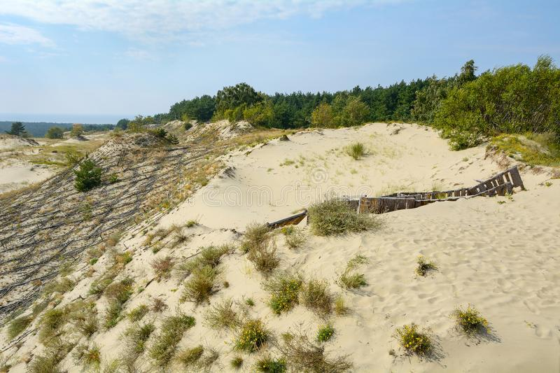 The landscape of the sand dunes royalty free stock photos