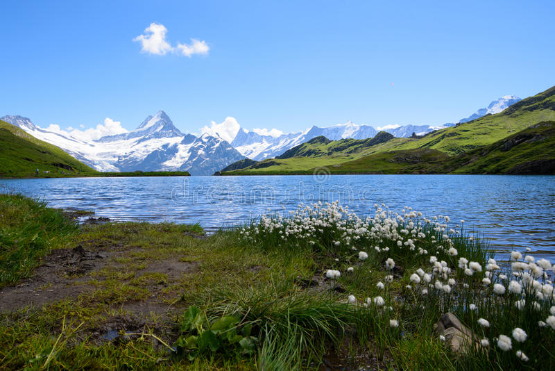 Landscape Scene from First to Grindelwald, Bernese Oberland, Switzerland stock images