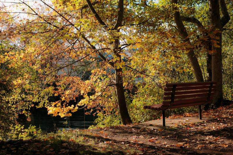 Sit and enjoy the fall stock image