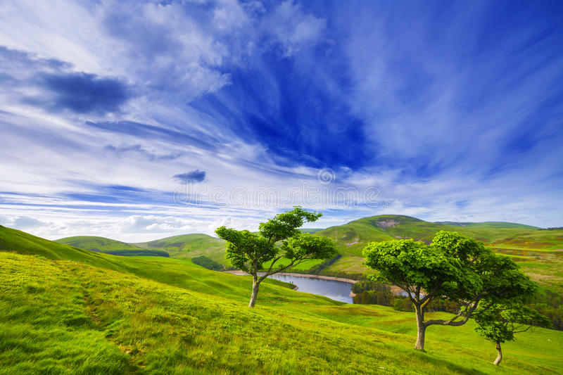Landscape scenery of green valley with trees, river and cloudy b royalty free stock photography