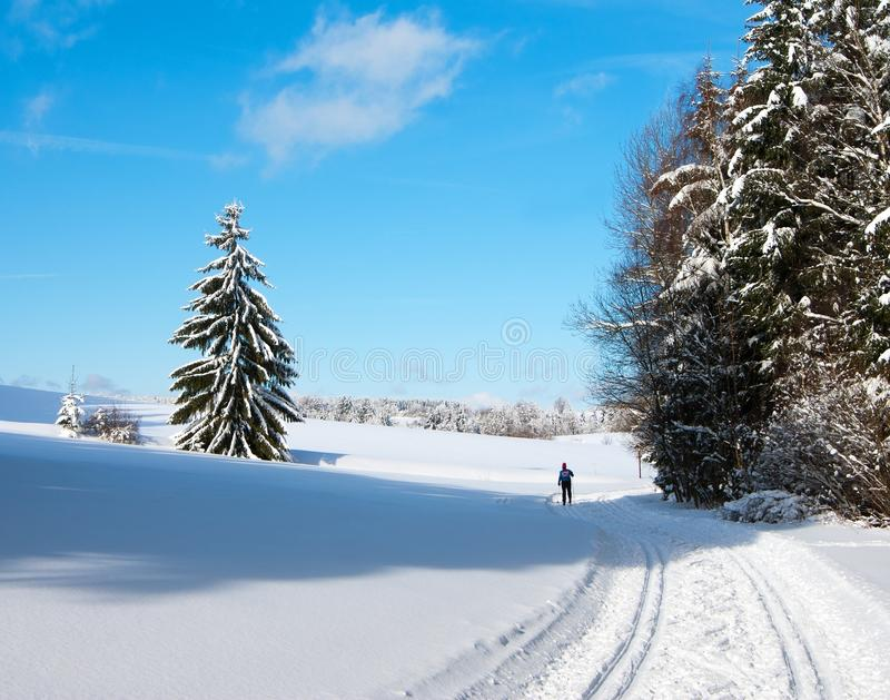 Landscape scenery with modified crosscountry skiin. Wintry landscape scenery with modified crosscountry skiing way royalty free stock image