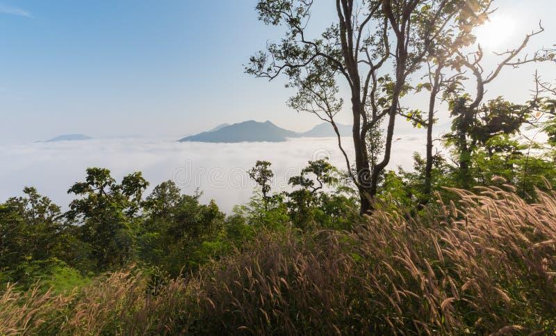 Landscape and sea of fog over Phu Thok Mountain stock images