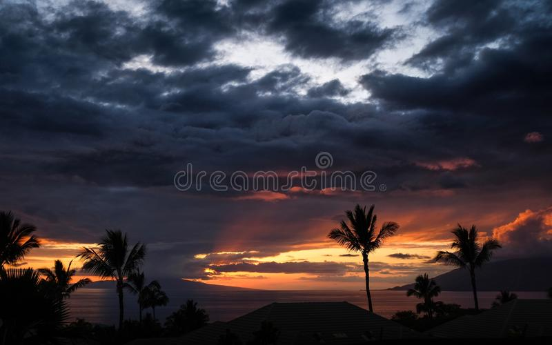 Landscape shot of silhouettes of palm trees during sunset under the cloudy sky. A landscape shot of silhouettes of palm trees during sunset under the cloudy sky stock photos