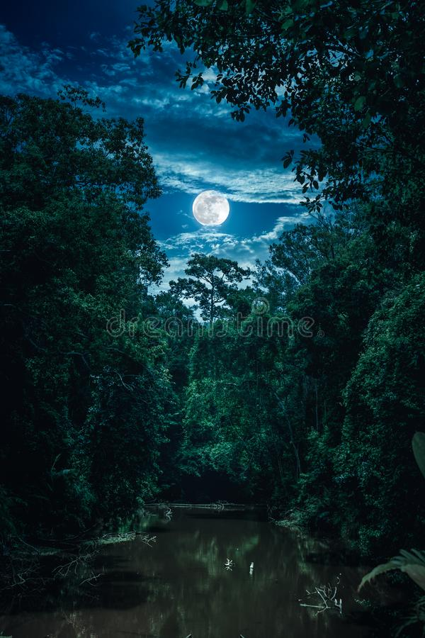 Landscape of sky with clouds and moon over serenity nature in forest. stock photos