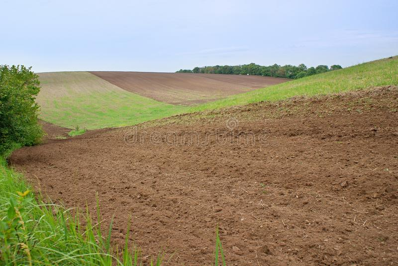 Landscape at slope of cultivated field royalty free stock photography