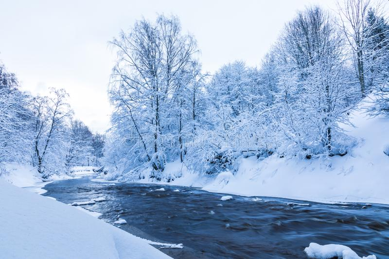 The landscape of the small river or the brook in the beautiful winter forest or in the park. Among the trees under the snow, ice and hoar stock photography