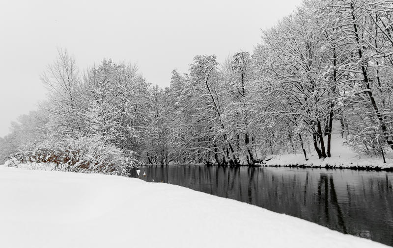 Landscape snow scene-river and trees- Nuremberg, Germany- river Pegnitz stock image