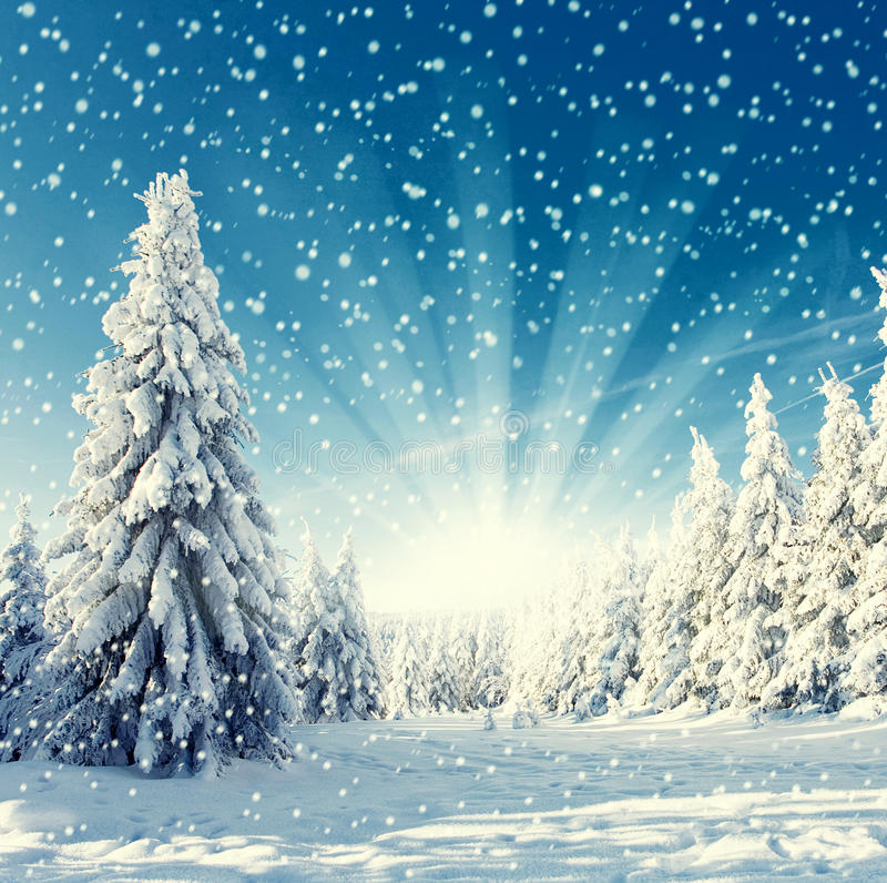 Landscape - snowfall royalty free stock images