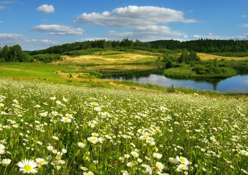 landscape sommaren royaltyfria foton