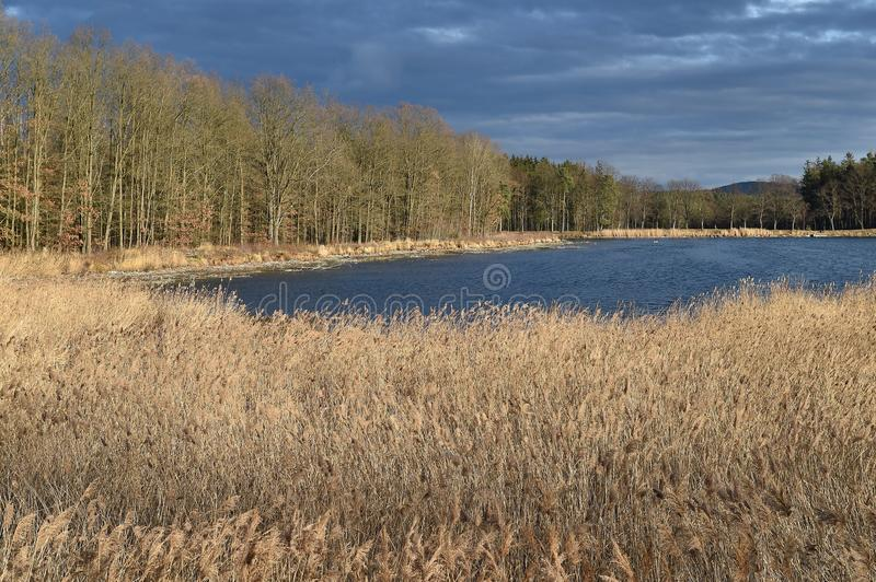 Landscape in southern Bohemia stock images