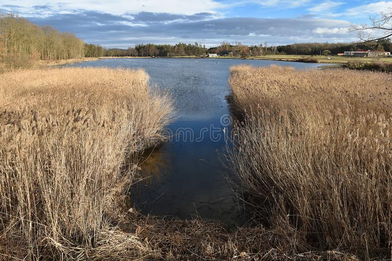 Landscape in southern Bohemia stock photography