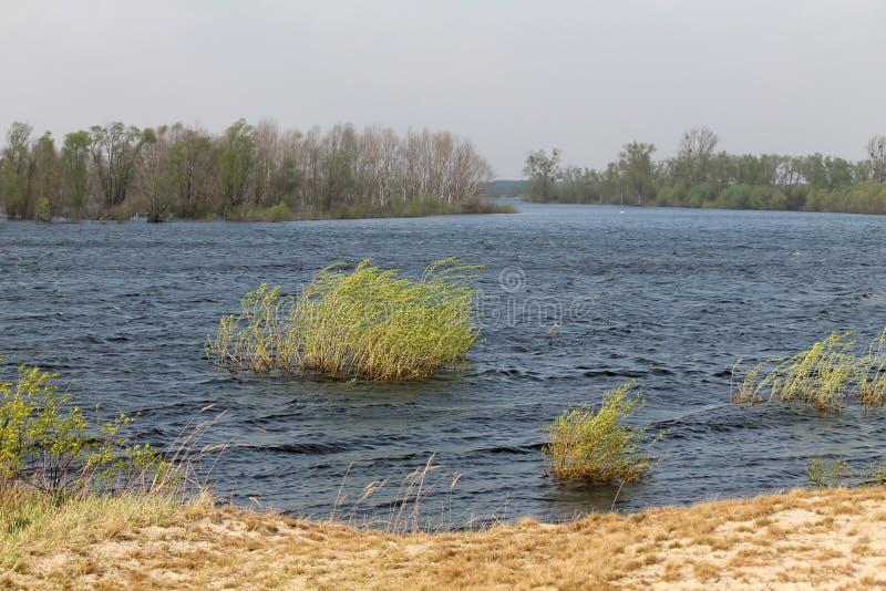 Landscape with spring flooding of Pripyat River near Turov, Belarus. Landscape with spring flooding of the Pripyat River near Turov, Belarus stock photo