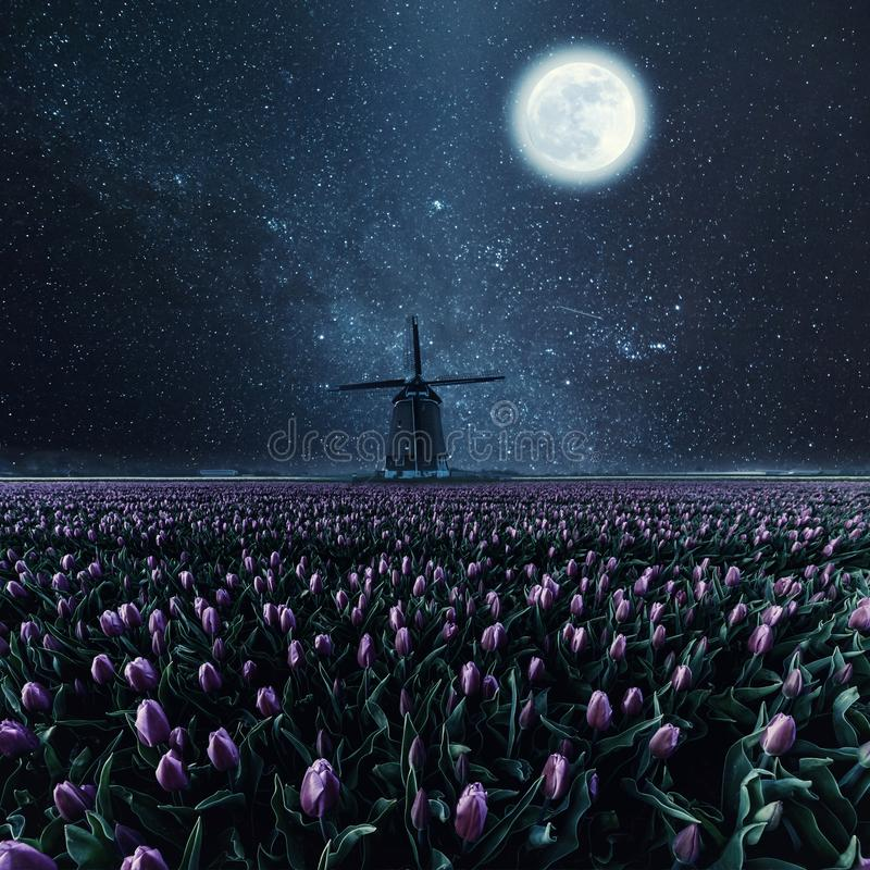 Landscape with stars, moon and flowers. Night field of tulips and windmill. Vintage landscape with stars, moon and flowers. Film filter, retro style stock images