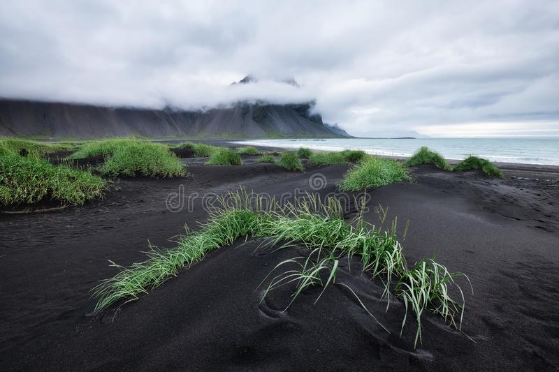 Landscape in the Stokksnes, Iceland. Black sand on the sea shore and high rocks. Natural landscape in the Iceland. Travel - image royalty free stock images