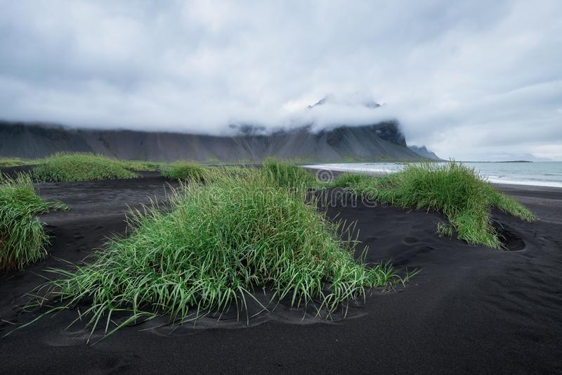 Landscape in the Stokksnes, Iceland. Black sand on the sea shore and high rocks. Natural landscape in the Iceland. Travel - image stock image