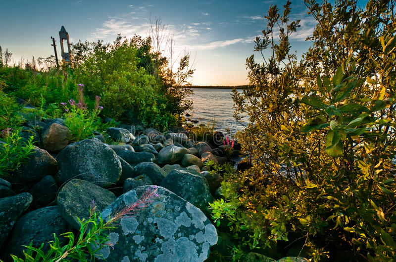 Download Landscape With Stones And Plants Stock Photo - Image: 26007936