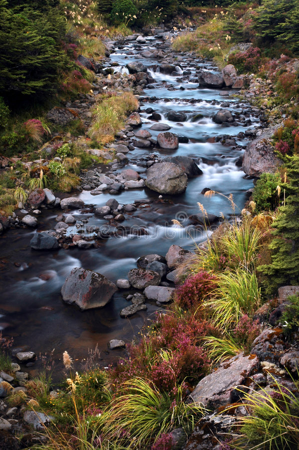 Landscape of stream stock photo