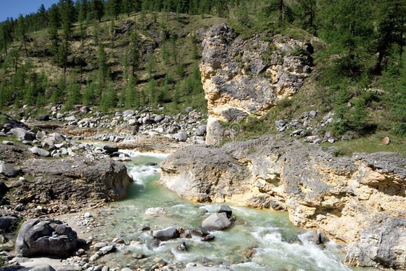 Landscape.Stream do rio da montanha. Sibéria, Rússia. fotos de stock