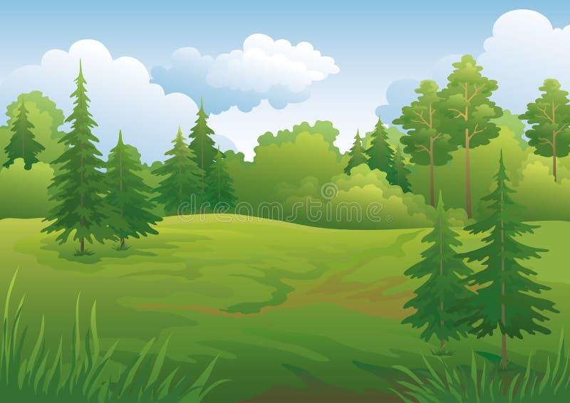 Landscape, summer forest stock illustration