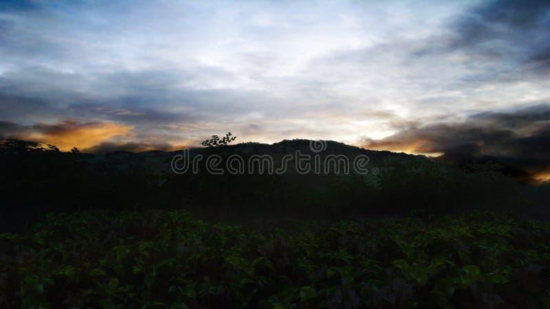 Landscape Sunset stock photos