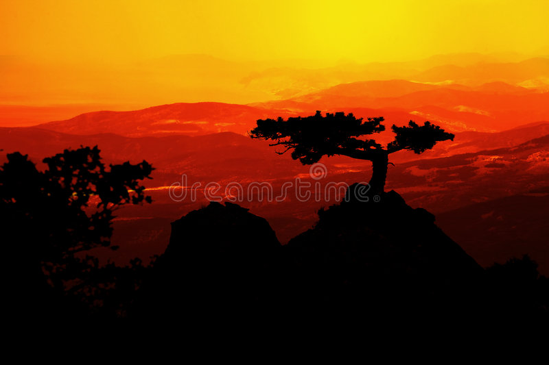 Landscape at sunset stock photo