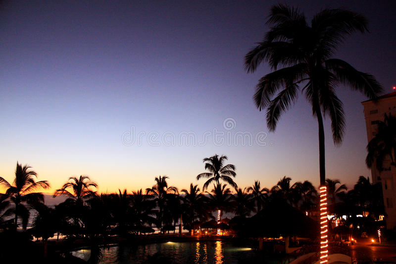 Download Landscape Sunset On The Beach With Palm Trees Stock Image