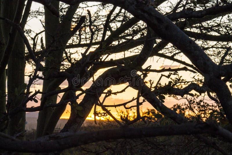 Sunset landscape image background wallpaper stock photography