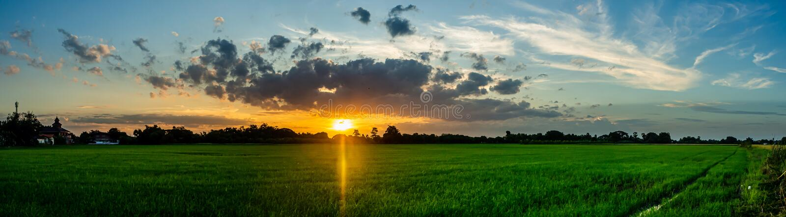 Landscape of suset with Green fields royalty free stock images